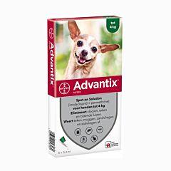 Advantix Hond