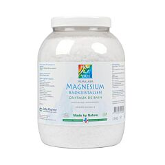 Deba Pharma Magnesium Vlokken Himalaya Pot 2,5kg