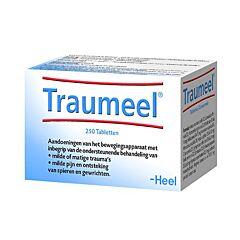 Heel Traumeel 250 Tabletten