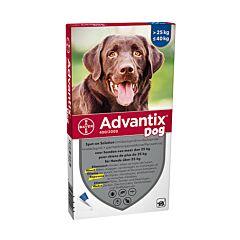 Advantix Hond 25