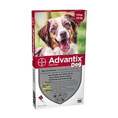 Advantix Hond 10