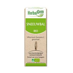 HerbalGem Sneeuwbal Maceraat 15ml